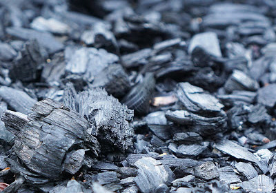 Charcoal raw materials