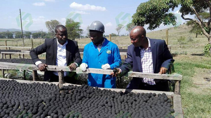 15 tons/h Coal Briquette Production Plant in Kenya